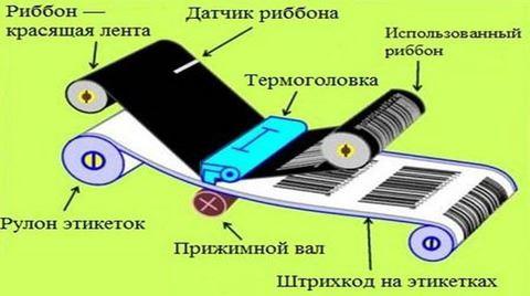 Обслуживание принтеров штрих-кода. Чистка термо головки
